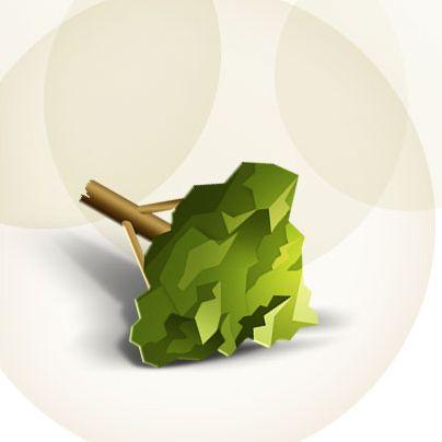 przewodnik-ekologiczny-mity-07